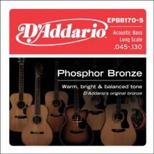 D'Addario Epbb170-5 Phosphor Bronze 5-String 45-130