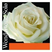 Pirastro Wondertone Solo  310321. 1