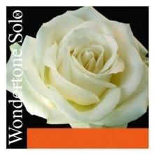 Pirastro Wondertone Solo  410421. 4