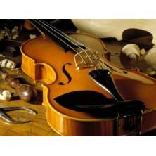 Revisión Luthier Violín