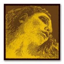 Pirastro Evah Pirazzi Gold 425421 Viola