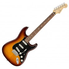 Fender Player Stratocaster Plus Top Pf-Tbs