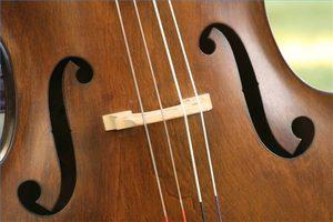 Cuerdas de violonchelo