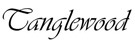Tanglewood Tw15Ns